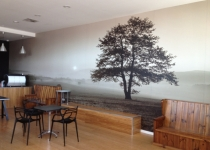 Wall Graphics.JPG