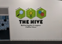 wall graphics_the hive 01