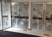 window graphics_UniSA-Wirringka 05